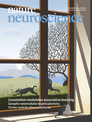 NN cover for Albergaria et al. 2018
