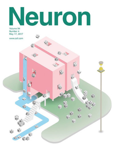 Neuron cover for Murakami et al 2017